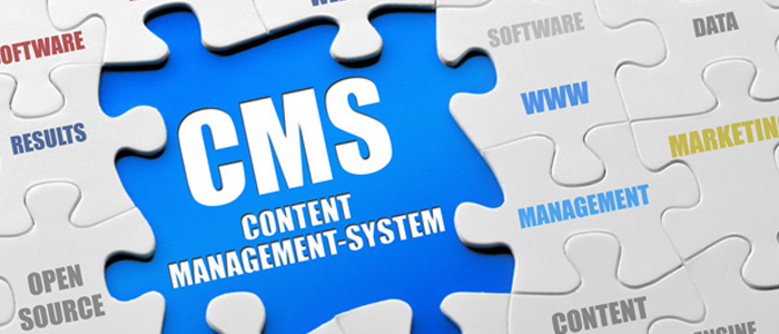 content-management-webiste
